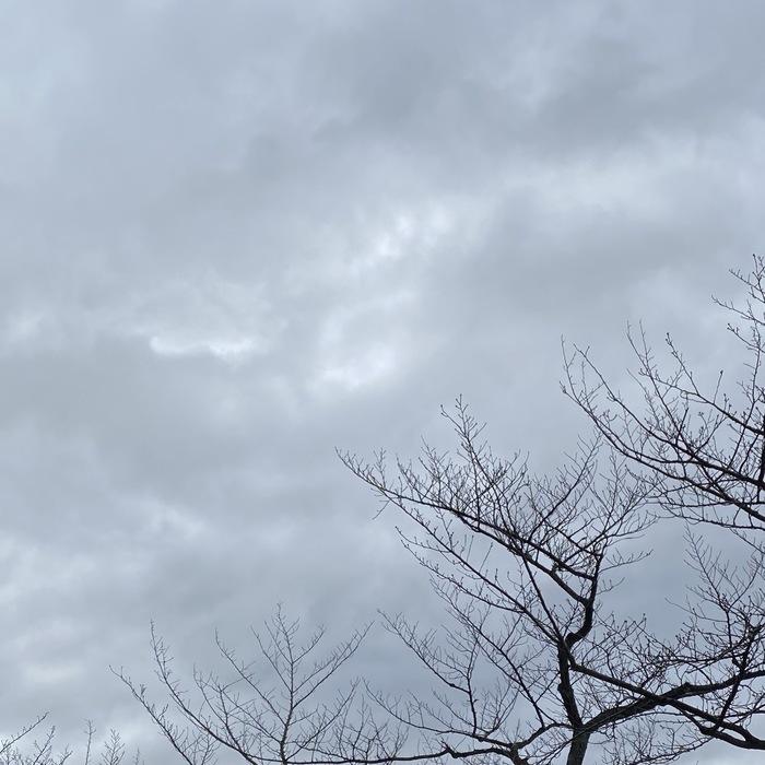 京都、 よろしくお願いします。
